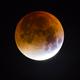 Lunar Eclipse,                                Knut Hagen