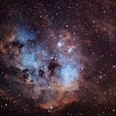 IC 410 - Tadpole Nebula in narrowband (SHO),                                  HaSeSky