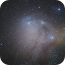 Rho Ophiuchi cloud complex,                                Dave Ng