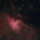 M16- Eagle Nebula,                                Ron