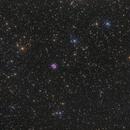 M57 - Ring Nebula & IC1296,                                Siegfried