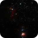 Orion,                                kribba