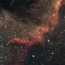 Cygnus Wall,                                Parker Kennedy