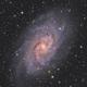 M33 Triangulum Galaxy,                                Elmiko