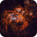 NGC 6357 - The Lobster Nebula,                                Andy 01