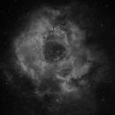 Epsilon 130 First Light,                                  Richard Sweeney