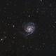 Pinwheel Galaxy M101,                                Tejus