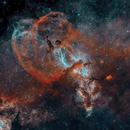 NGC 3576 (Statue of Liberty Nebula),                                Alex Woronow