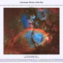 IC 1795 - The Fishhead Nebula and Neighbors,                                Alan Pham