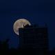 la plus grosse plaine lune,                                colin