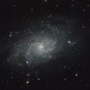 M33,                                Andrea Collevecchio