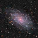 M33 Triangulum Galaxy,                                Tristan Campbell