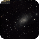 C7 (NGC2403, 2018.02.20, 35x7min=4h5min, convert3),                                Carpe Noctem Astronomical Observations