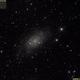 C7 (NGC2403, 2018.02.20, 35x7min=4h5min, convert3),                    Carpe Noctem Astr...