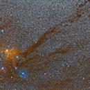 Rho Ophiuchus Region,                                Leo