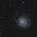 "Galaxy Season 2020 - ""Pinwheel Galaxy"" with the APO,                                Michael S."