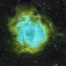 Rosette Nebula - SHO version,                                Mike Brady