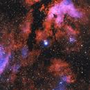 IC-1318 The Gamma Cygni Nebula,                                Earl Hebert