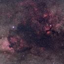 Cygnus,                                MartinV
