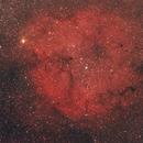 Elephant Trunk Nebula - Wide Field,                                Katarn