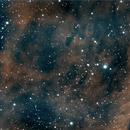 IC 1318, HOO [HIP 100268 as centering star],                                Stephen Garretson