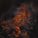 IC405 Flaming Star Nebula STARNET,                                Sylvain Lefebvre