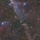 NGC 1909 Witch Head Nebula,                                Niko Geisriegler
