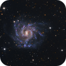 NGC 7424 – Grand Spiral Galaxy,                                  Terry Robison