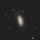 NGC 2903,                                Benny Colyn