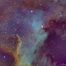 NGC7000 - Narrowband,                                Daniel Fournier