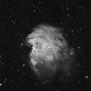 NGC 2174 ( Le singe ),                                Bigcrunch