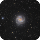 M83 - Südliche Feuerradgalaxie,                                Stefan Westphal
