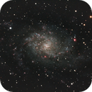 Triangulum Galaxy - Another Try,                                Pat Darmody