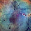 IC 1396,                                Stefan Schimpf