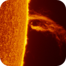 """""""The Claw"""" Quiescent Prominence - 31.10.2017,                                Łukasz Sujka"""