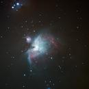 Orion Nebula,                                Koen Dierckens