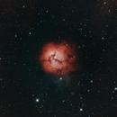 Trifid Nebula (M20),                                David Wright
