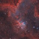 Heart Nebula (IC 1805),                                Andres Noriega