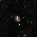 NGC 7479,                                Andrew Lockwood