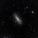 M 102 Spindle Galaxy (crop),                                Aurelio55