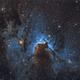 SH2-155  Cave Nebula  SHO,                                Marc Verhoeven