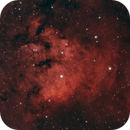 NGC 7822 - Devil's Head,                                pterodattilo