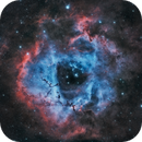 Rosette nebula, NGC 2237,                                ParyshevDenis