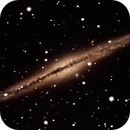NGC 891 - The Silver Sliver Galaxy,                                Timothy Martin & Nic Patridge