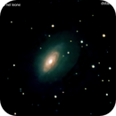 ngc3521 galassia nel leone                       distanza  32 milioni  A.L.,                                Carlo Colombo