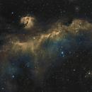 IC 2177 SHO , la mouette,                    echosud