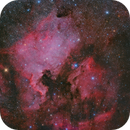 North America & Pelican Nebulae In Cygnus!,                                Mohammad Nouroozi