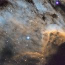 IC 5070  The Pelican Nebula,                                  Carl Weber