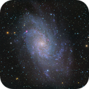 M33 - Triangulum Galaxy,                                Markus A. R. Langlotz