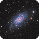 NGC 2403 LRHaGB,                                Adam Landefeld